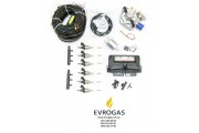 Комплект STAG-6 QMAX BASIC, ред. Antartic 340 л.с., форс. Hana Single, распред, штуцера, ф 1-2
