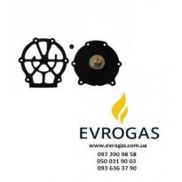 Ремкомплекты к газовым редукторам (85)